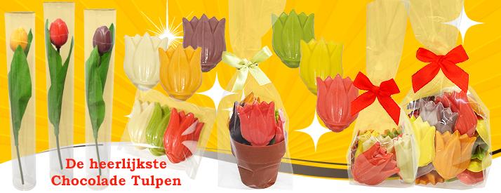 Chocolade Tulpen
