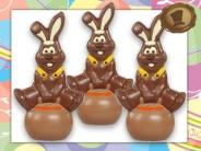 Chocolade Paashaas  op Springbal